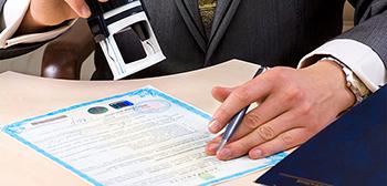 Бесплатная регистрация юридического лица или ИП